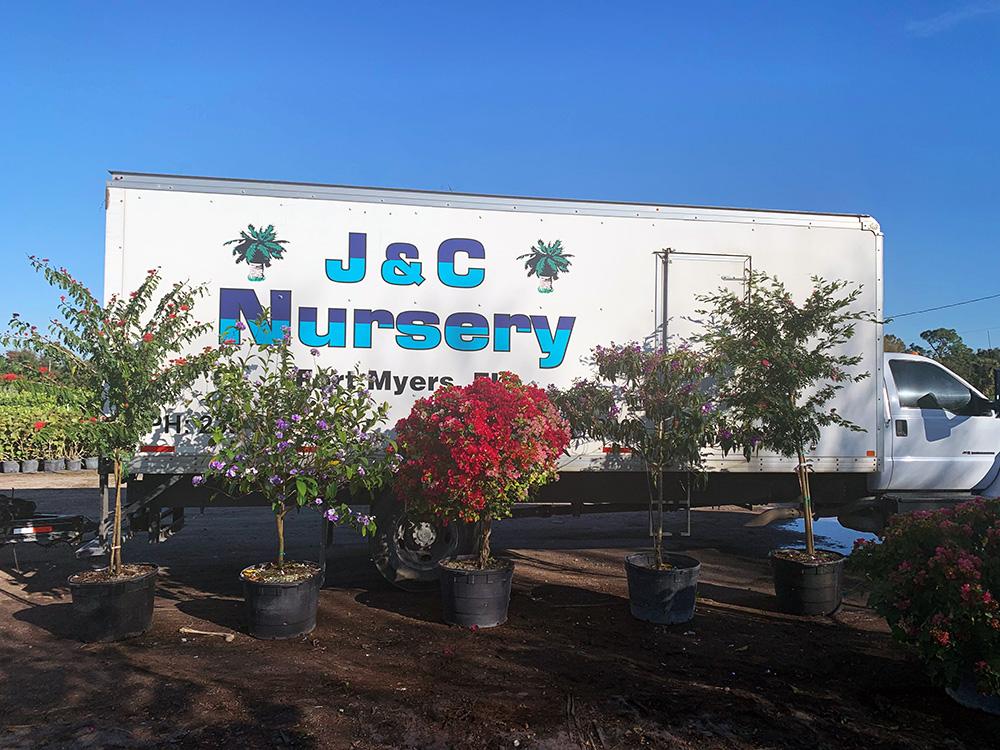 J & C Nursery Inc Fort Myers